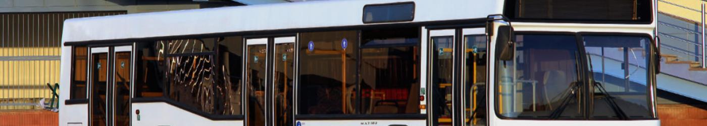 Автобус MAZ-103486 для теоретического лицея «Alexandru cel Bun» Бендеры